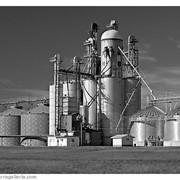 Проектирование комплексов зерноперерабатывающей промышленности фото
