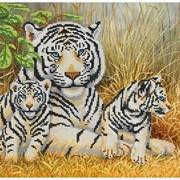 Схема под бисер Тигры фото