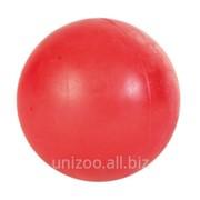 Игрушка для собак Мяч из резины 8см фото