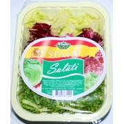 Овощные салаты фото