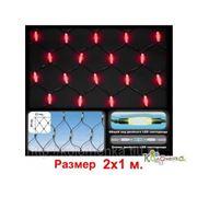 Елочные игрушки Россия Led сетка Две головы - 200 красных светодиодов, с контроллером, 2х1 м LEDN-2-R/200L фото