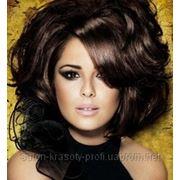 Стрижки и окрашивание волос Loreal Cutrin фото