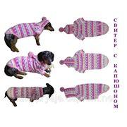 Одежда животным свяжу свитер с капюшоном фото