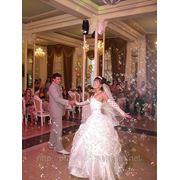 Спецэффект «Мыльные пузыри» на вашей свадьбе фото