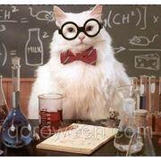 Підготовка до ЗНО з біології фото