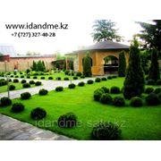 Курсы ландшафтного дизайна www.idandme.kz фото
