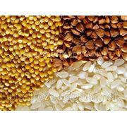 Окажу услуги по переработке сельхозпродукции фото