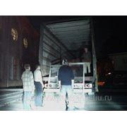 Грузчики для перевозки и обслуживания выставок фото