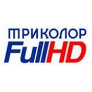 Триколор ТВ Full HD комплект GS-8306 антена 0,55 фото