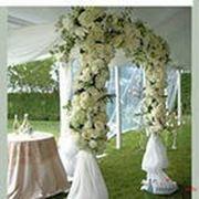 Выездная церемония свадьбы фото