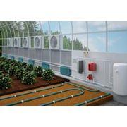 Строительство энергосберегающих тепличных комплексов фото