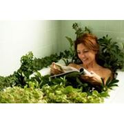 Оздоровительные ванны фото