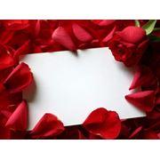 Открытки на цветы фото