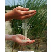 Песок сухой фото