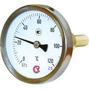 Термометры фото