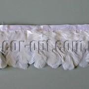 Перо-юбка белая 6-7см/48-50см 570425 фото