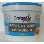 Краска силиконовая фасадная белая Craftsman FSN фото