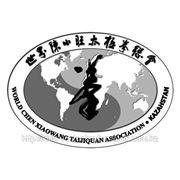 Группа Ушу Чень Тайцзи и Тайцзи Цигун фото