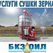 Сушка зерна, услуги сушки зерна. Посушить зерно фото