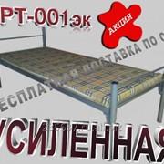 АРТ 001-эк. Кровать металлическая усиленная фото