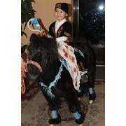 Конь для взрослых, пони для маленьких фото