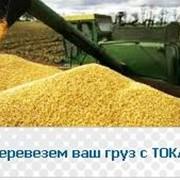 Перевозка зерна с ТОКА фото