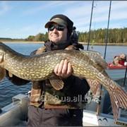 Тур рыбалка в Швеции на озере Феген фото