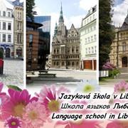 Летние каникулы в Чехии фото