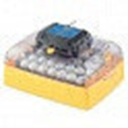Инкубатор Ovation EX 56 автоматический NEW фото