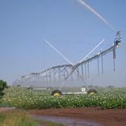 Система капельного орошения T-L Irrigation фото