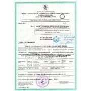 Бланки, сертификаты, аннотации фото