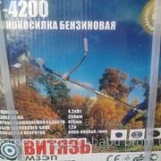 ВИТЯЗЬ БГ-4200 ПРОФИ Бензотример+три диска фото