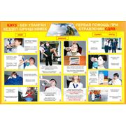 """Плакаты """"Первая медицинская помощь при ЧС"""" на двух языках фото"""