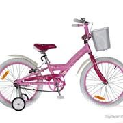 Детский велосипед Comanche Florida Fly W20 фото
