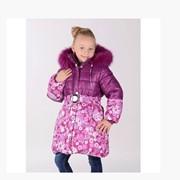Куртки зимние, Куртка для девочки Ромашка фото