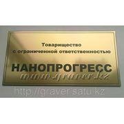 Табличка на дверь из золотистого пластика 30х15 см. фото
