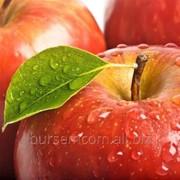 Яблоки сочные натуральные фото