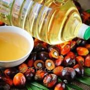 Пальмовый олеин (налив и коробки по 25 кг) фото
