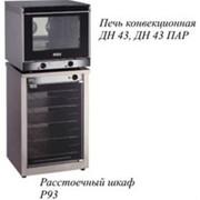 Печь электрическая конвекционная ДН43 фото