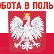 Офіційна робота в Польщі фото