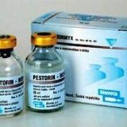 Песторин Мормикс (Pestorin Mormyx) 10 д фото