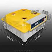 Инкубаторы автоматические на 484805281056 фото