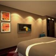 Гостиничные номера: повышенной комфортности, Superior Double, Номера улучшенной комфортности. фото