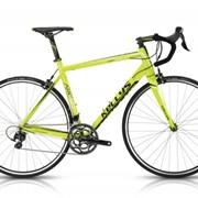Велосипед Kellys Шоссейный: ARC 50 фото