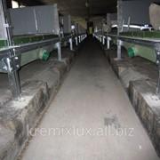 Монтаж навозных ванн на направляющих балках фото