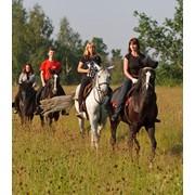 Катание на лошадях, катание на лошадях алматы, конные прогулки алматы фото