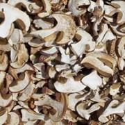 Белый гриб сушеный боровик фото