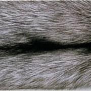 Натуральный мех лисицы чёрно-бурой фото