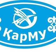 Логотип на рукав (1 цвет, 8 см) фото