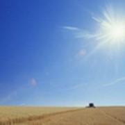 Экологическое землепользование Экологическое земледелие фото
